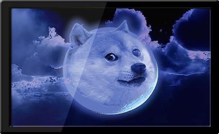 Such Doge Much Wallpaper