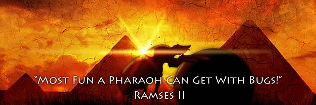Scarab Tales motto